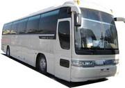 Автобусы,   Южно  Корейские Киа   Дэу ,  Хундай в  Омске.