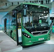 Автобусы и микроавтобусы из США