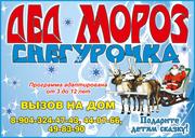 Дед Мороз и Снегурочка вызов на дом. Омск.